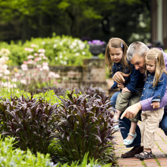 A father and two daughters enjoy looking at plants in Mt. Cuba's formal garden.