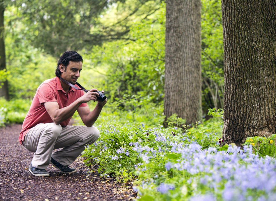 Spring Photography Stroll