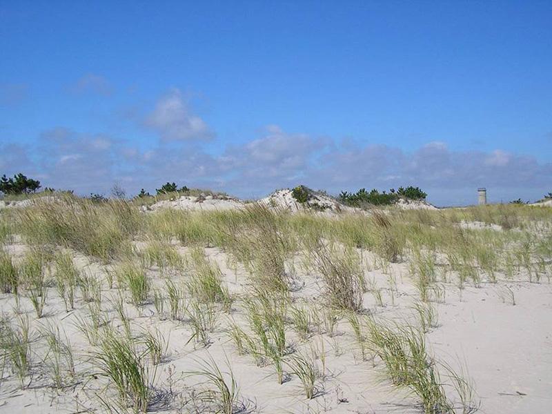 Coastal Plain with blue sky