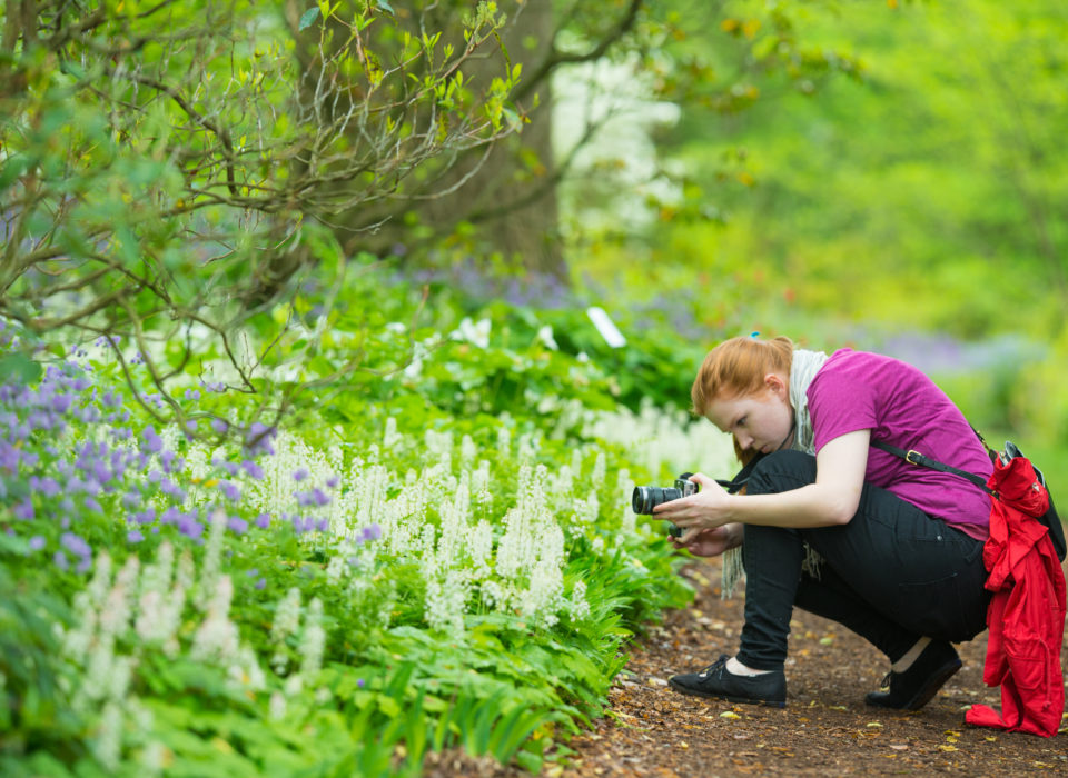 Woman photographing plants in the gardens.