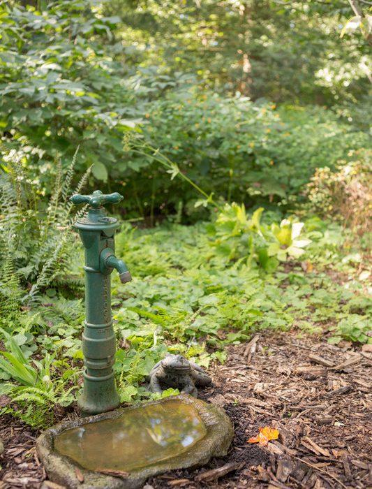 A Garden of Sensory Delights.