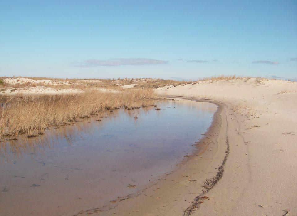 The Delmarva Coast.