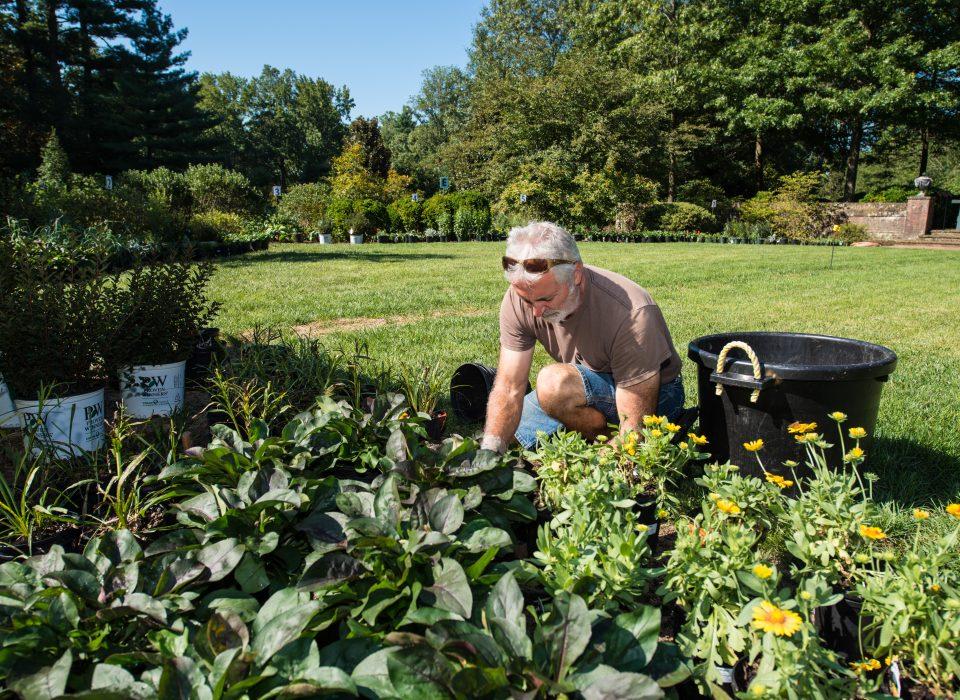 Discovering Garden Ecology 3