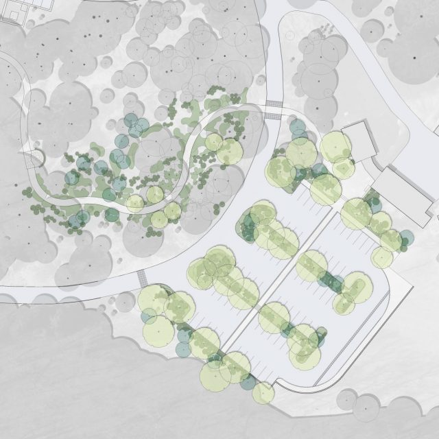 A rendering of plantings planned for Mt. Cuba Center's new Welcome Center, guest parking lot, and Woodland Glade garden.