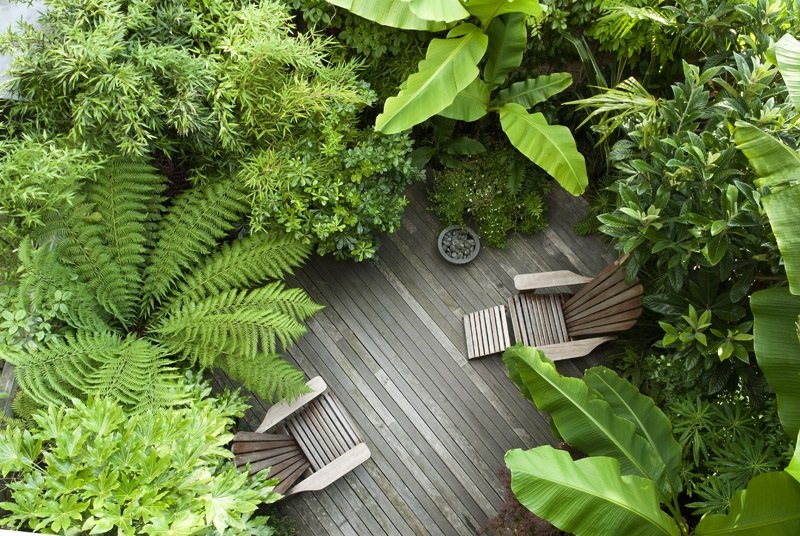 Deck with two wooden chairs surrounded by green and lush foliage illustrating great garden design.