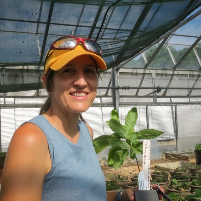 Shelby French in Greenhouse with American Chestnut