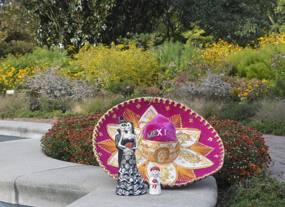 celebrate Mexican culture, dance, and mariachi as we partner with the Hispanic American Association of Delaware to bring you our first-ever Fiesta en el Jardín